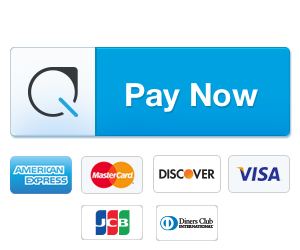 pay-button-large
